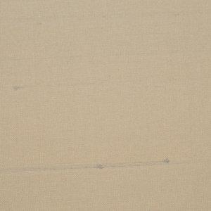 Sand Horizon