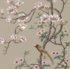 Wild Magnolia Pauf