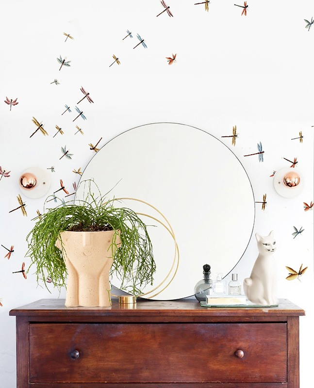 Insect and nature wallcoverings suitable for living room